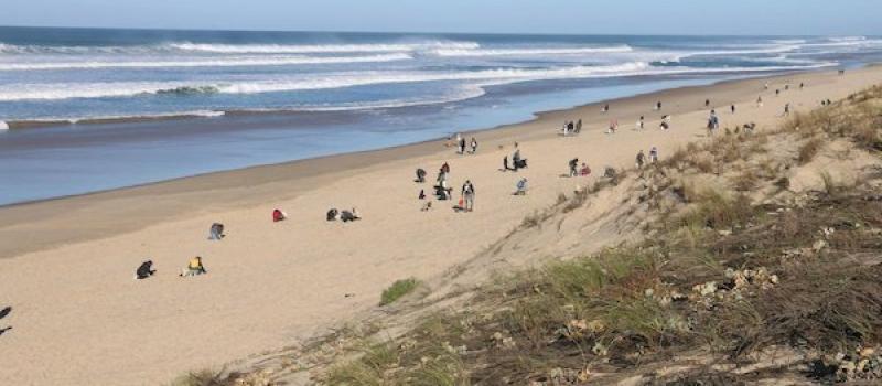 Beach clean up 2019 Texel