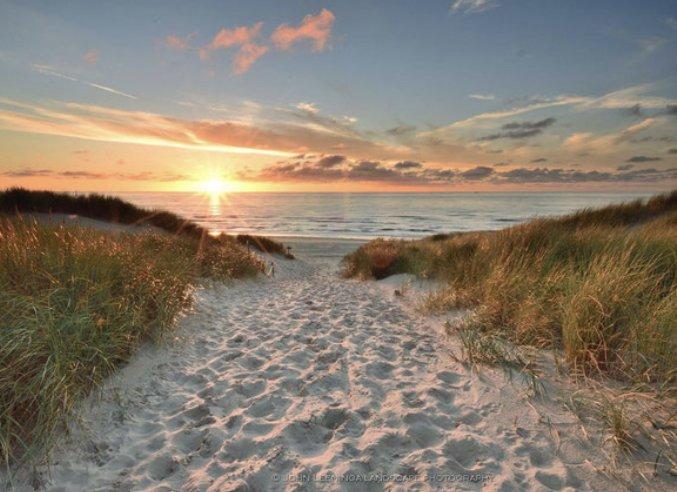 Strandopang Texel